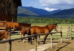 Cherry Ridge Horse Property