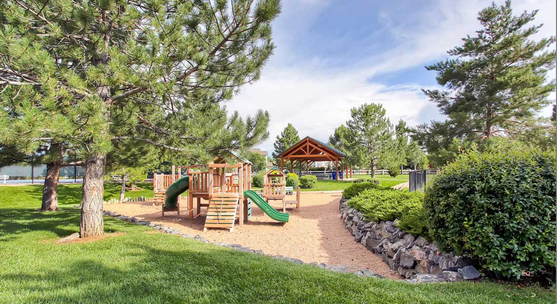 Playground in Castle Pines CO