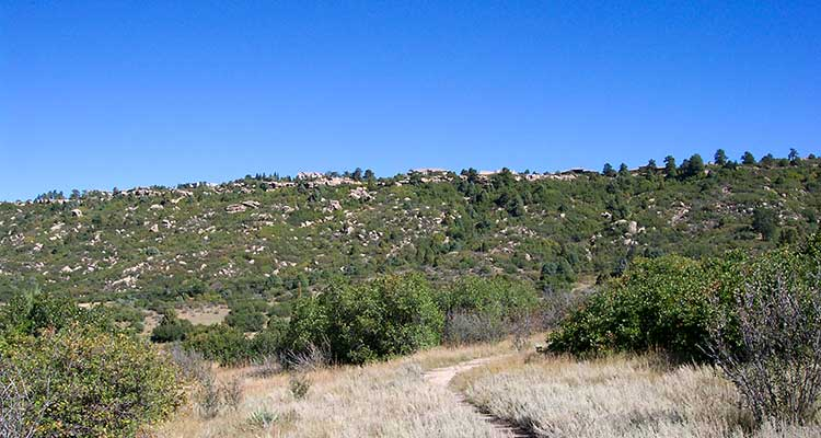 Charter Oaks Castle Rock CO