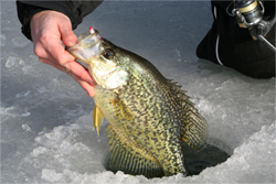 Ice Fishing in Colorado