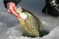 Ice Fishing in Colorado