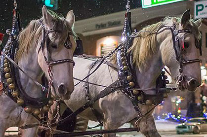parker-holiday-carriage-rides-uber