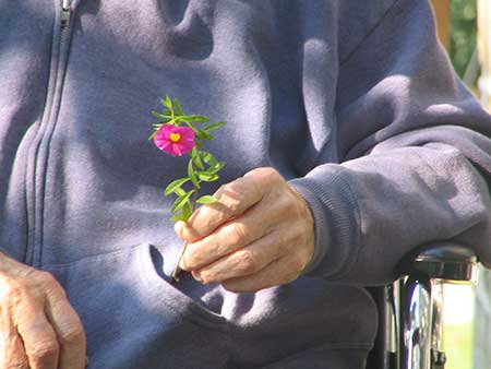 Volunteer at  Senior Affordable Housing